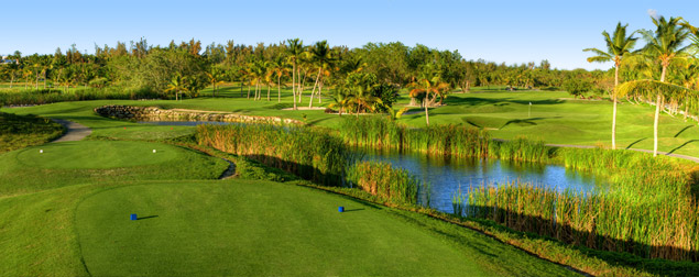 Barceló Bávaro Golf